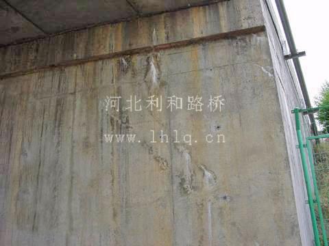 桥墩裂缝修补